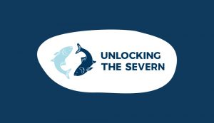 Unlocking the Severn Logo on darkblue background