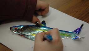 child colouring in a fish picture