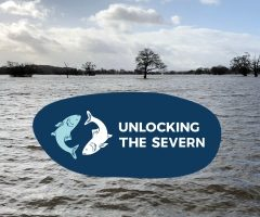 Unlocking The Severn - Our river for people and