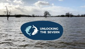 floodplain underwater on the River Severn with Unlocking the Severn logo