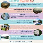 Poster for Unlocking the Severn World Fish Migration Day activity programme