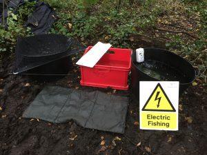 Electric fishing kit