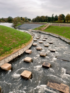 The natural channel fish pass atBevere